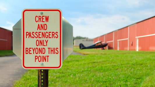 Online Pilot Training International Aircraft Security
